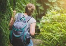 Ταξιδιώτης γυναικών Στοκ εικόνα με δικαίωμα ελεύθερης χρήσης