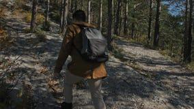 Ταξιδιώτης που φωτογραφίζει τις φυσικές απόψεις στο δάσος από τον ποταμό βουνών Άτομο που πυροβολεί τις γραφικές απόψεις Ο τύπος  απόθεμα βίντεο