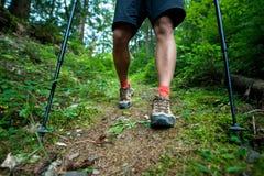 Ταξιδιώτης στις μπότες πεζοπορίας με τους περιπάτους πόλων οδοιπορίας στο δάσος Στοκ φωτογραφίες με δικαίωμα ελεύθερης χρήσης