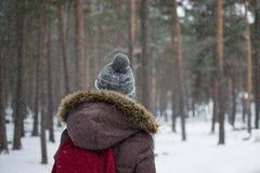 Ταξιδιώτης στο δάσος Στοκ Εικόνες