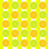 Ταπετσαρία με citrus-fruit διανυσματική απεικόνιση