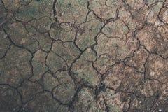 Ταπετσαρία, ραγισμένο χώμα Στοκ Εικόνες