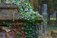 Ταφόπετρα στο νεκροταφείο Στοκ φωτογραφία με δικαίωμα ελεύθερης χρήσης