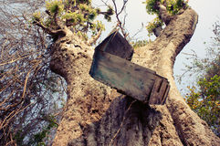 Ταχυδρομική θυρίδα, κορμός δέντρων, ταχυδρομική θυρίδα Στοκ Φωτογραφίες