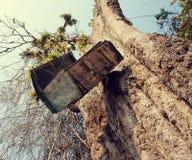 Ταχυδρομική θυρίδα, κορμός δέντρων, ταχυδρομική θυρίδα Στοκ Εικόνες