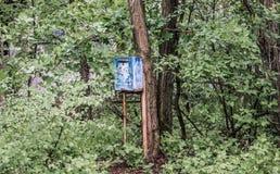 Ταχυδρομική θυρίδα στο κέντρο Pripyat μεταξύ των πράσινων δέντρων Στοκ εικόνες με δικαίωμα ελεύθερης χρήσης