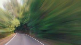 Ταχύ Drive σε έναν στενό δρόμο στο δάσος απόθεμα βίντεο