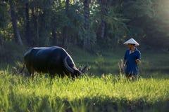 Ταϊλάνδη ο αγρότης και ένας βούβαλος Στοκ εικόνα με δικαίωμα ελεύθερης χρήσης