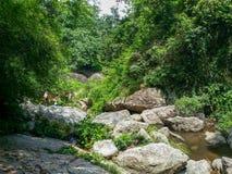 Ταϊλάνδη Chiang Mai - περιοχή καταρρακτών Huaykeaw Στοκ Εικόνες