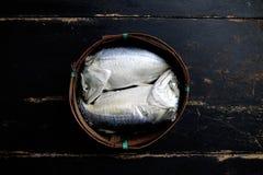 Ταϊλανδικά ψάρια σκουμπριών που βράζουν στον ατμό στοκ φωτογραφίες