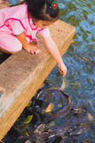 Ταϊλανδικά ψάρια τροφών κοριτσιών Στοκ Εικόνα