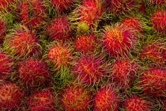 Ταϊλανδικές rambutan γεύσεις φρούτων στοκ εικόνες