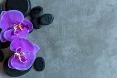 Ταϊλανδική SPA Η τοπ άποψη των καυτών πετρών που θέτει για την επεξεργασία μασάζ και χαλαρώνει με την πορφυρή ορχιδέα στον πίνακα στοκ εικόνες με δικαίωμα ελεύθερης χρήσης