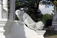 Ταϊλανδικός δράκος ναών Στοκ εικόνες με δικαίωμα ελεύθερης χρήσης