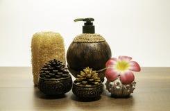 Ταϊλανδικό άρωμα που τίθεται με το πεύκο κώνων και το λουλούδι plumeria Στοκ εικόνα με δικαίωμα ελεύθερης χρήσης