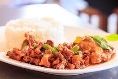 Ταϊλανδικό κάρρυ με το ρύζι Στοκ Εικόνες
