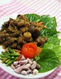 Ταϊλανδικά νότια τρόφιμα, βόειο κρέας που τηγανίζεται με το κάρρυ τσίλι Στοκ εικόνα με δικαίωμα ελεύθερης χρήσης