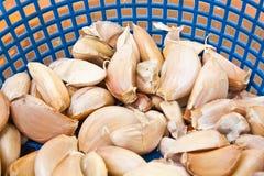 Ταϊλανδικά συστατικά τροφίμων - σκόρδο στο μπλε καλάθι Στοκ Εικόνα