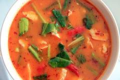 Ταϊλανδικά τρόφιμα καρυκευμάτων σούπας κοτόπουλου του Tom Yum, τοπ άποψη Στοκ Φωτογραφία