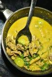 Ταϊλανδικά τρόφιμα κρέατος κάρρυ Στοκ Εικόνα
