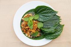 Ταϊλανδικά τρόφιμα σαλάτας Yum στοκ εικόνα