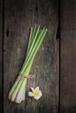 Ταϊλανδικά τρόφιμα, lemongrass, lemongrass Στοκ φωτογραφία με δικαίωμα ελεύθερης χρήσης