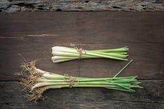 Ταϊλανδικά τρόφιμα, lemongrass, lemongrass στοκ εικόνες
