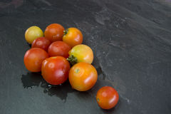 Ταϊλανδικές ντομάτες κερασιών Στοκ Φωτογραφία