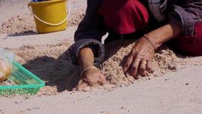 Ταϊλανδικές φτωχές μαύρες γυναίκες τρωγλών βιντεοσκοπημένων εικονών αποθεμάτων που ψάχνουν τα κοχύλια φιλμ μικρού μήκους