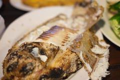 Ταϊλανδική αλατισμένη εφελκιδώδης ψημένη στη σχάρα συνταγή ψαριών στοκ φωτογραφία