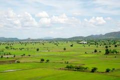 Ταϊλανδική επαρχία με τους ορυζώνες ρυζιού Στοκ Εικόνες