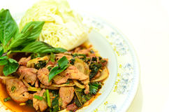 Ταϊλανδική σαλάτα χοιρινού κρέατος Στοκ Εικόνα