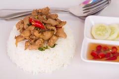 Ταϊλανδική τηγανισμένη γρήγορο φαγητό άδεια βασιλικού με το κοτόπουλο στο ρύζι Στοκ εικόνες με δικαίωμα ελεύθερης χρήσης