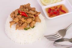 Ταϊλανδική τηγανισμένη γρήγορο φαγητό άδεια βασιλικού με το κοτόπουλο στο ρύζι Στοκ εικόνα με δικαίωμα ελεύθερης χρήσης