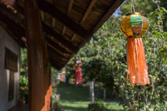 Ταϊλανδικός κήπος με τις εγκαταστάσεις και τα δέντρα Στοκ εικόνα με δικαίωμα ελεύθερης χρήσης