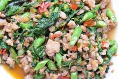 Ταϊλανδικός πικάντικος βασιλικός χοιρινού κρέατος Στοκ Εικόνες