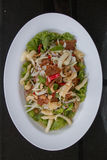 Ταϊλανδικό μικτό πιάτο σαλάτας Στοκ εικόνες με δικαίωμα ελεύθερης χρήσης