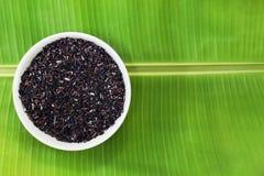 Ταϊλανδικό μούρο ρυζιού στο κύπελλο στο υπόβαθρο φύλλων μπανανών Στοκ Εικόνες