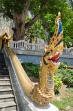 Ταϊλανδικό naka τέχνης κλιμακοστάσιων Στοκ φωτογραφίες με δικαίωμα ελεύθερης χρήσης