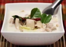 ταϊλανδικό tum kha kai τροφίμων Στοκ εικόνες με δικαίωμα ελεύθερης χρήσης