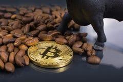 Ταύρος και καφές Bitcoin στοκ φωτογραφία με δικαίωμα ελεύθερης χρήσης