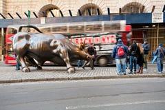 ταύρος που χρεώνει τη Νέα &Upsilo στοκ φωτογραφία με δικαίωμα ελεύθερης χρήσης