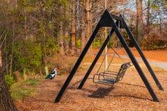 Ταλάντευση και πάπια Muscovy Piedmont στο πάρκο, Ατλάντα, ΗΠΑ Στοκ φωτογραφίες με δικαίωμα ελεύθερης χρήσης