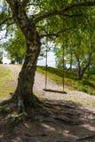 Ταλάντευση στη σκιά την ηλιόλουστη ημέρα Στοκ Φωτογραφίες