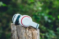 Τα άσπρα ακουστικά αναστέλλονται στην ξυλεία Πράσινη περιοχή και rel στοκ φωτογραφίες