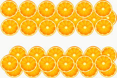 Τα άσπρα πορτοκαλιά φρούτα τρώνε τον κύκλο στοκ εικόνα