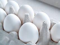 Τα άσπρα φρέσκα ακατέργαστα αυγά κοτόπουλου βρίσκονται σε ένα εμπορευματοκιβώτιο για τη μεταφορά του αυγού Στοκ Εικόνες