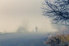 Τα άτομα σκιαγραφούν στην ομίχλη Στοκ Φωτογραφία