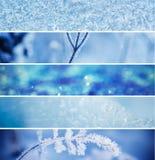 τα άτομα σχεδίου συλλογής που τίθενται snowflakes χιονιού το χειμώνα σας Στοκ φωτογραφία με δικαίωμα ελεύθερης χρήσης