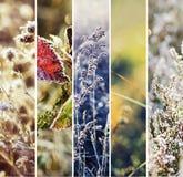 τα άτομα σχεδίου συλλογής που τίθενται snowflakes χιονιού το χειμώνα σας Στοκ Εικόνα